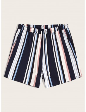 Men Drawstring Waist Colorful Striped Shorts