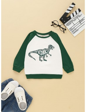 Toddler Boys Contrast Panel Letter And Dinosaur Print Sweatshirt